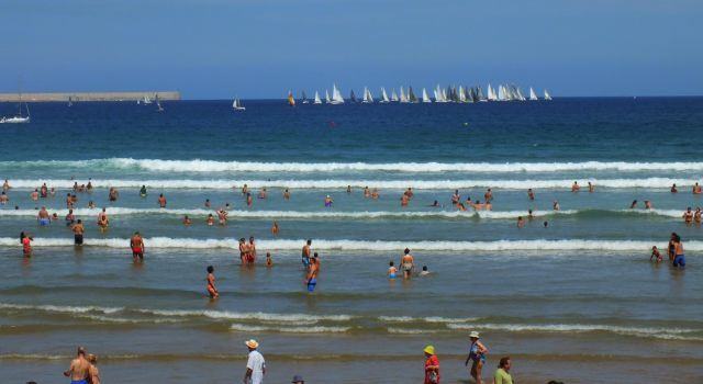 grupo de veleros navegando