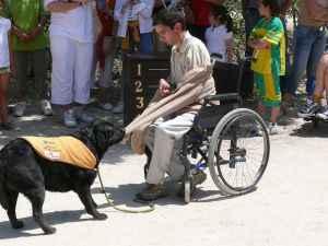 discapacitado ayudado por un perro