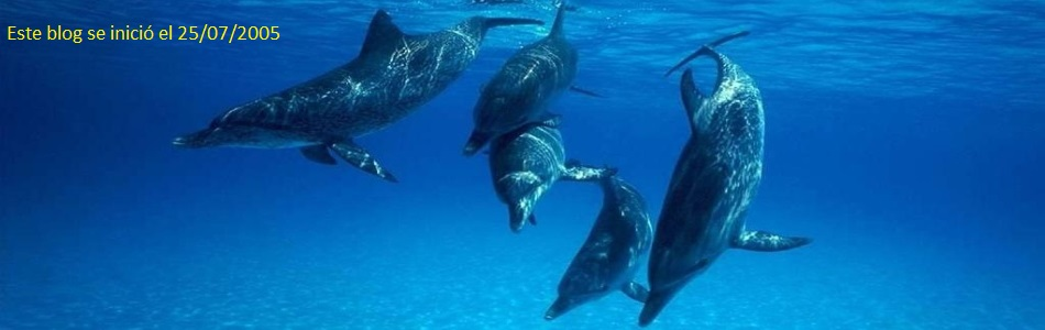 delfines