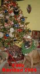 perrita navideña 2006