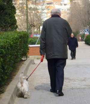 ancianopaseando al perro