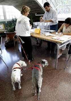 Votando con 2 perros