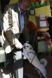 Votante con su perro