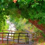 La senda verde del Río San juan, en Mieres