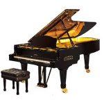 Por qué los pianos son negros