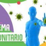 Reforzar el sistema inmunitario corporal.